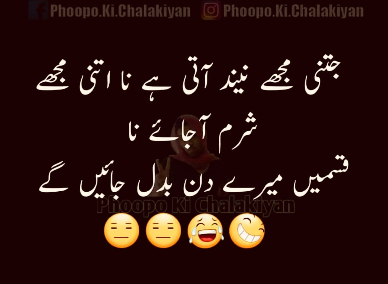 Dilkash دلكش Fun Quotes Funny Urdu Funny Quotes Funny Girl Quotes