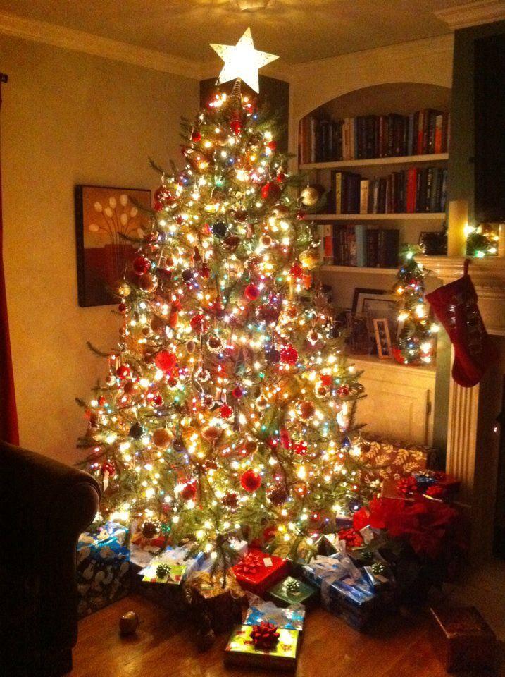 Christmas Tree Christmas Tree Christmas Decorations To Make Christmas Tree Lighting