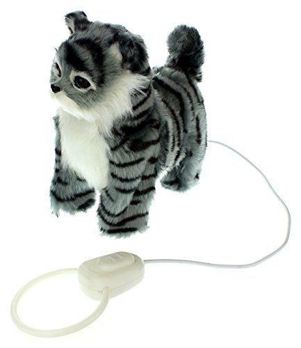 My Striped Kitty Walk Along Toy Stuffed Plush Cat W Realistic Walking Action Sounds Music Colors May Vary Cats Music Coloring Cat Toys Homemade Cat Toys