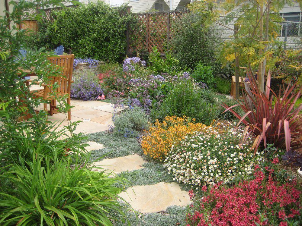 Drought tolerant mediterranean garden front yard - Drought tolerant landscaping ideas ...