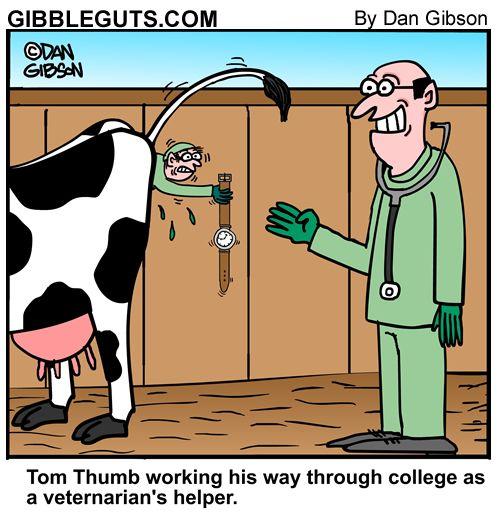 Tom thumb jobs