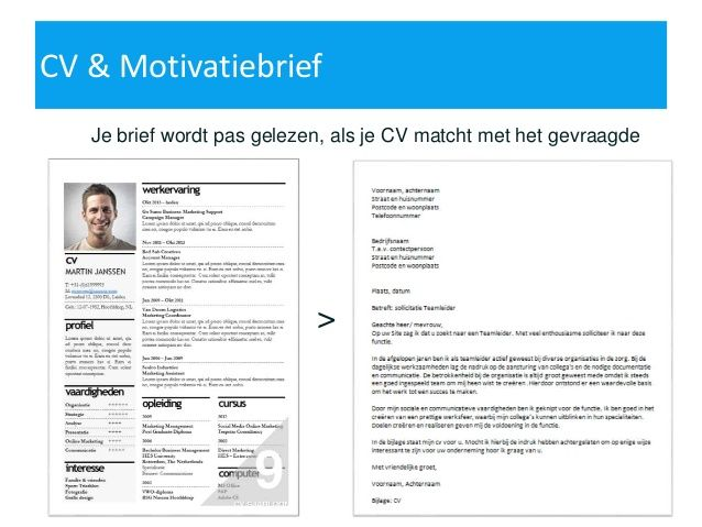 cv voorbeeld 2015   Google zoeken | cv en motivatiebrief | Pinterest