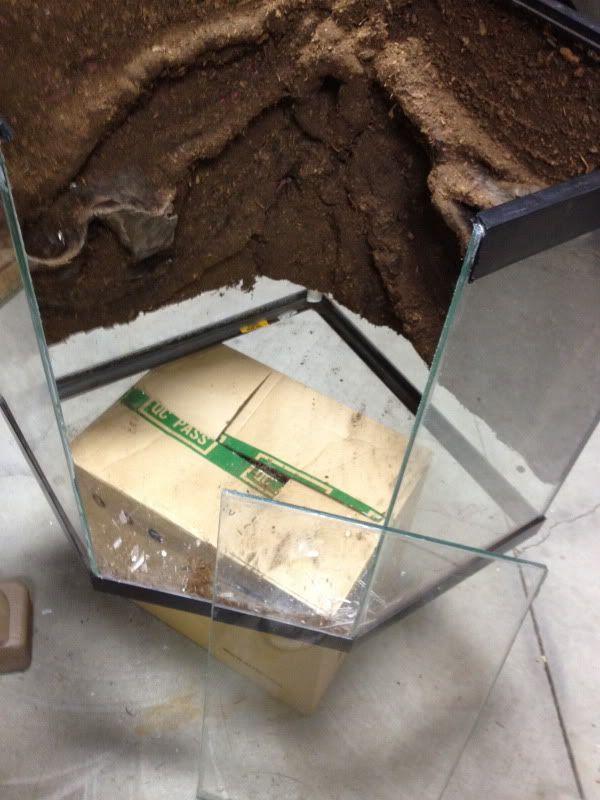 Converting Aquarium To Front Opening Terrarium Gecko Terrarium