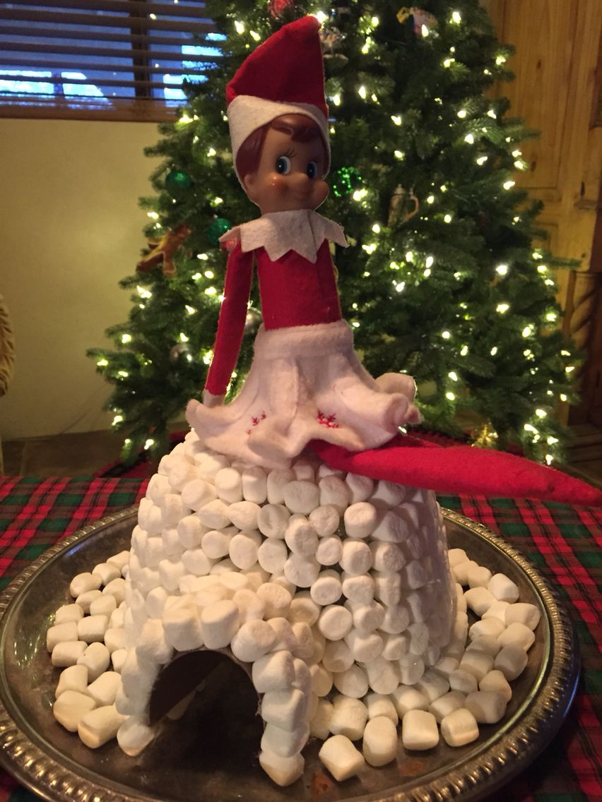 Snowflake, our Elf On The Shelf, made a mini marshmallow igloo last night! She's a clever little thing!