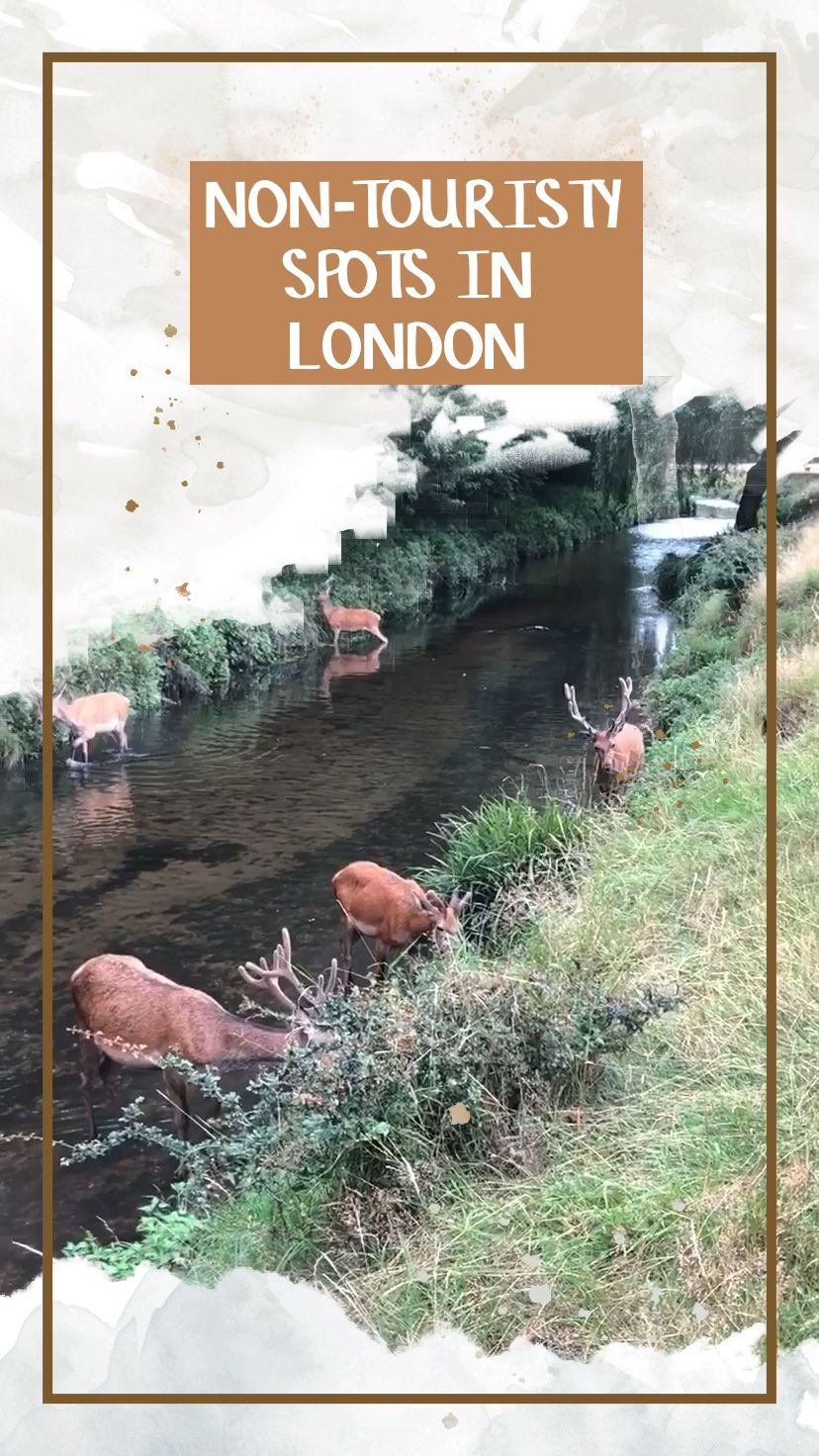 Amazing non-touristy things to do in London. Alternative London. London off the beaten path. London off the beaten track.