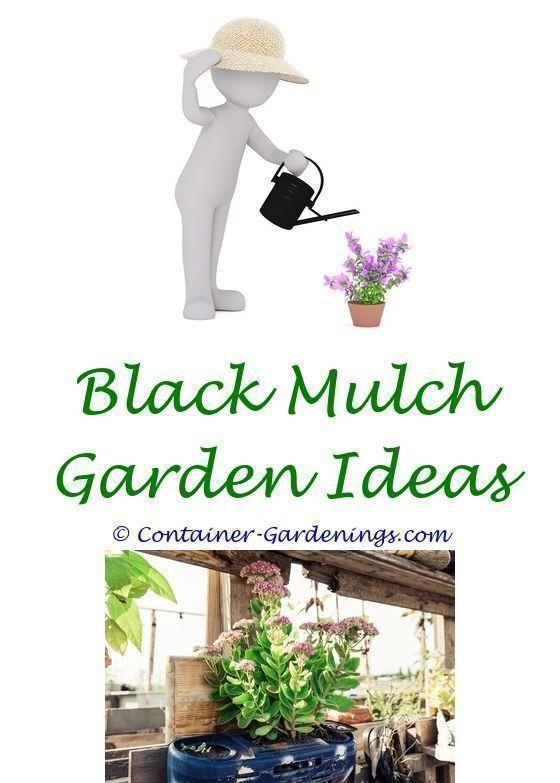 Beau Edgiging Container Vegetable Gardening Ideas   Winter Gardening Tips  Uk.garden Planter Border Idea South