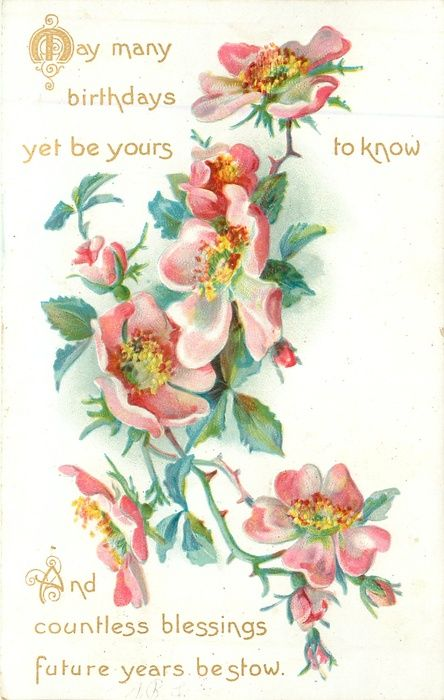 Wild roses 1908 may many birthdays yet be yours to know and wild roses 1908 may many birthdays yet be yours to know and countless m4hsunfo Gallery