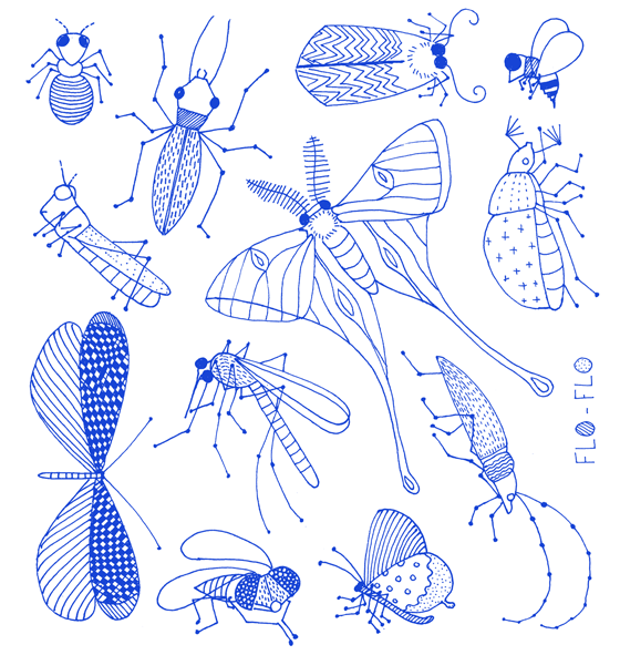 Florence boudet flo flo insect cockroach blue for How to draw flo