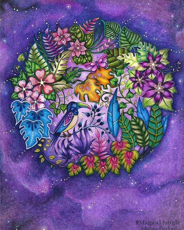 Johanna Basford Coloring Book Different View Of Basic To Cans Purple Background And Complimentary Flowers Tutorial On Board