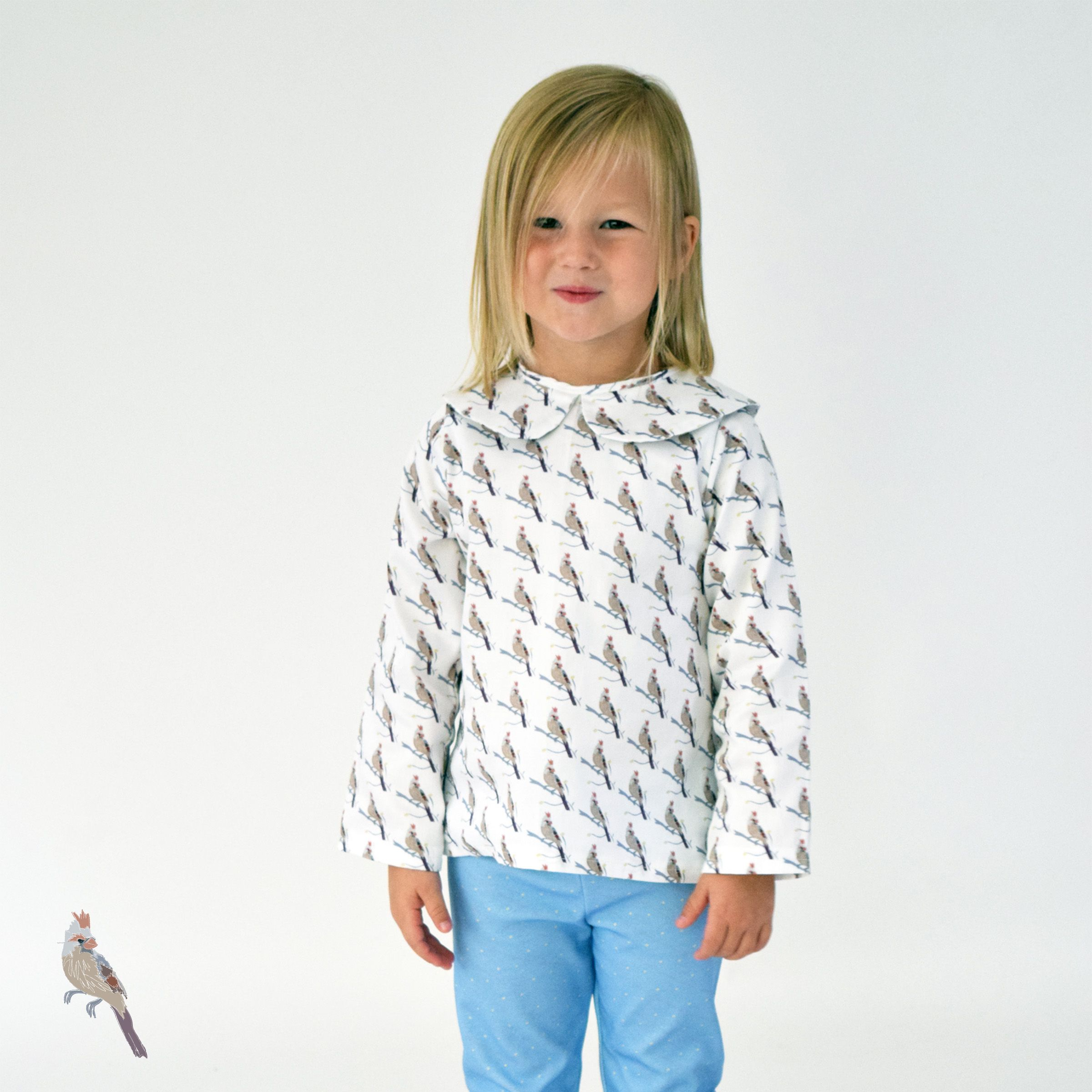 A Line Blouse Long Sleeve With Peter Pan Collarouter Shell