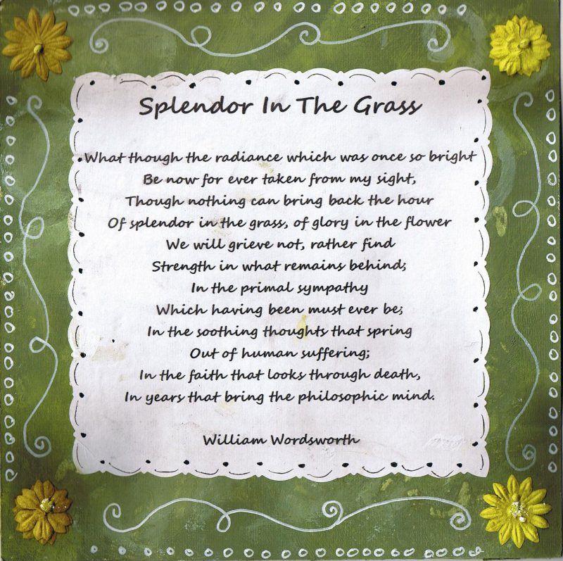 splendor in the grass poem