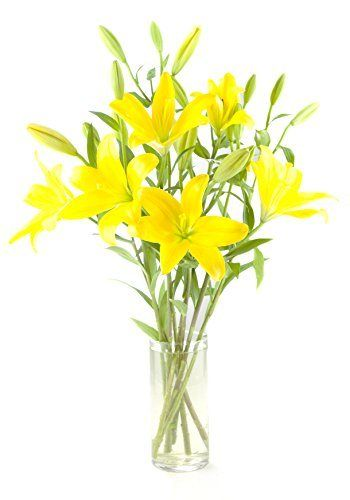 Yellow Lily Bouquet (8 Stems) - With Vase - http://flowersnhoney.com/yellow-lily-bouquet-8-stems-with-vase/