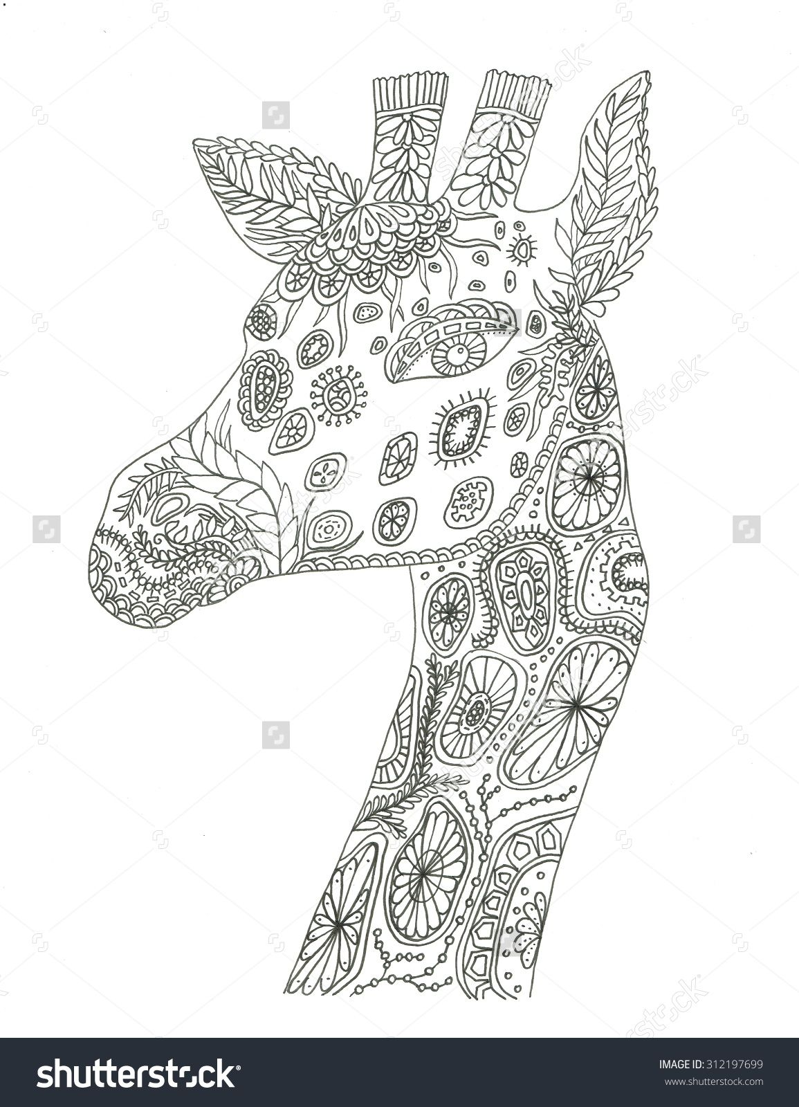 Giraffe Portrait Coloring Page Stock Photo 312197699 Shutterstock