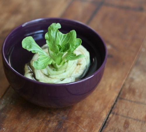 13 Vegetables That You Can Regrow Again And Again --> Bok Choy