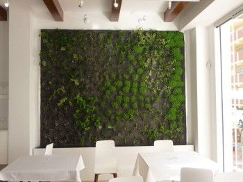 Alijardin, jardin vertical hidropónico en restaurante, 1