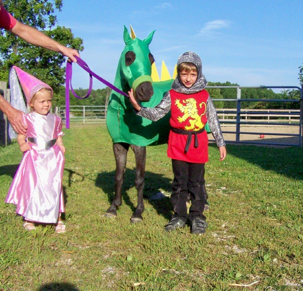 homemade horse costumes | Costumes for horse and rider ...