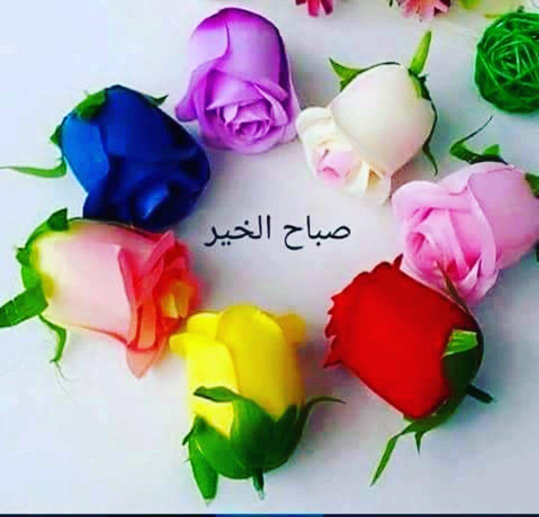 Emraa On Instagram صباح الورد والفل والياسمين نتمني لكم جميعا يوم مشرق ومليئ بالسعادة والفرح Good Morning Arabic Morning Greeting Good Morning Images