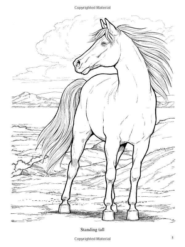 Wonderful World of Horses Coloring Book (Dover Nature ...