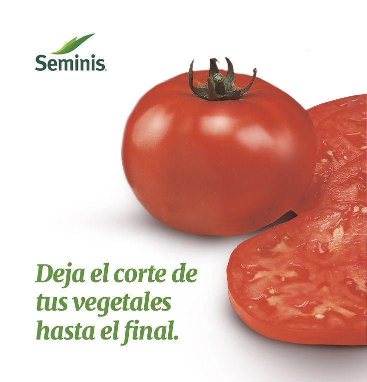 ¿Cuándo partir #vegetales crudos?  Cuando comas vegetales crudos, pártelos hasta que los vayas a consumir para evitar que pierdan sus nutrientes. #Seminis #Tip