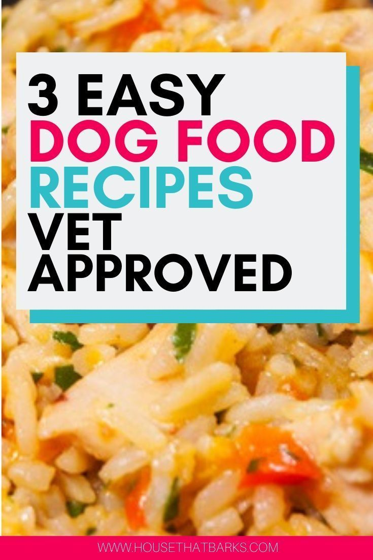 3 Easy Vet Approved Homemade Dog Food Recipes #dog food recipes, #homemade dog food