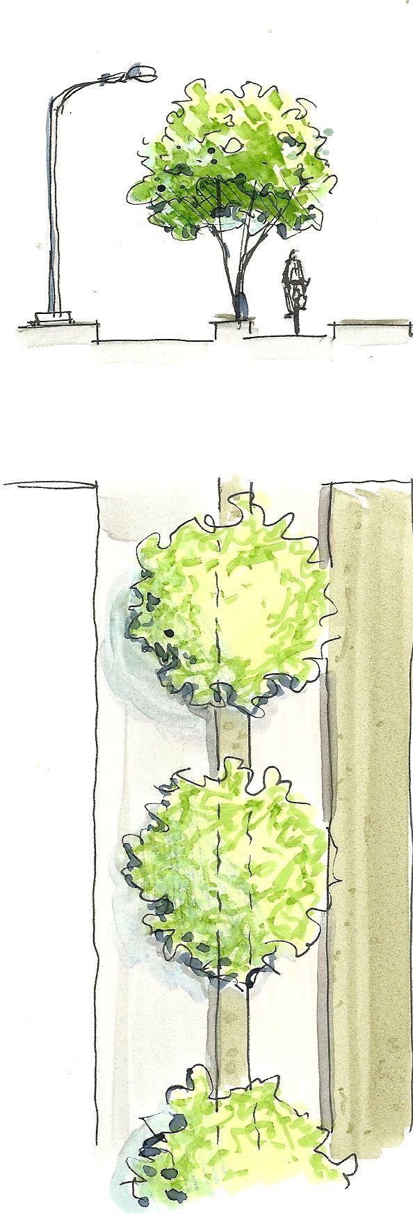 Sketch by Giovani Pavezzi