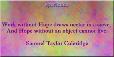 Nectar in a sieve essay