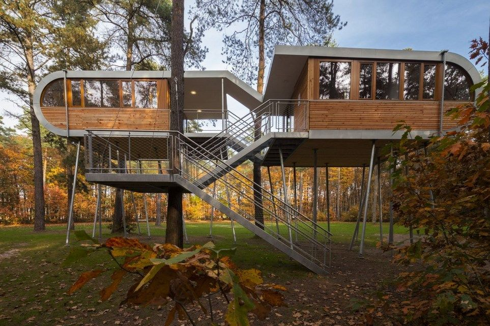 Architecture divine tree house designs by baumraum in belgian featuring unique architecture and exterior with staircase and steel railing plus wooden and