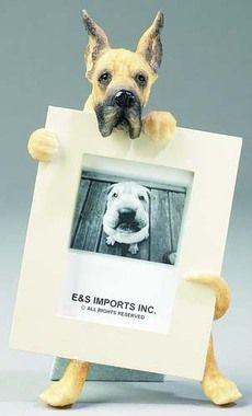 E&S Imports 2.5in x 3.5in Picture Frame - Great Dane