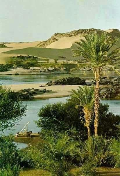 Un paraiso                 ⛵      Un magnifico paisaje de Aswan y su magico Nilo      ⛵
