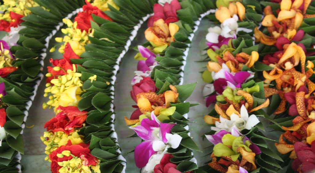 Tahitian leis Tahitian costumes, Leis, Polynesian dance