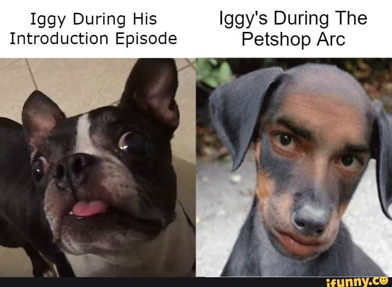 Iggy During His Iggy S During The Introduction Episode Petshop Arc