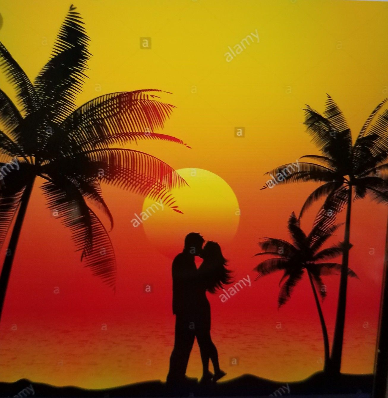 Tropical Sunset Palm Trees Couple Kissing Sunset Art Sunset Painting Painted Rocks