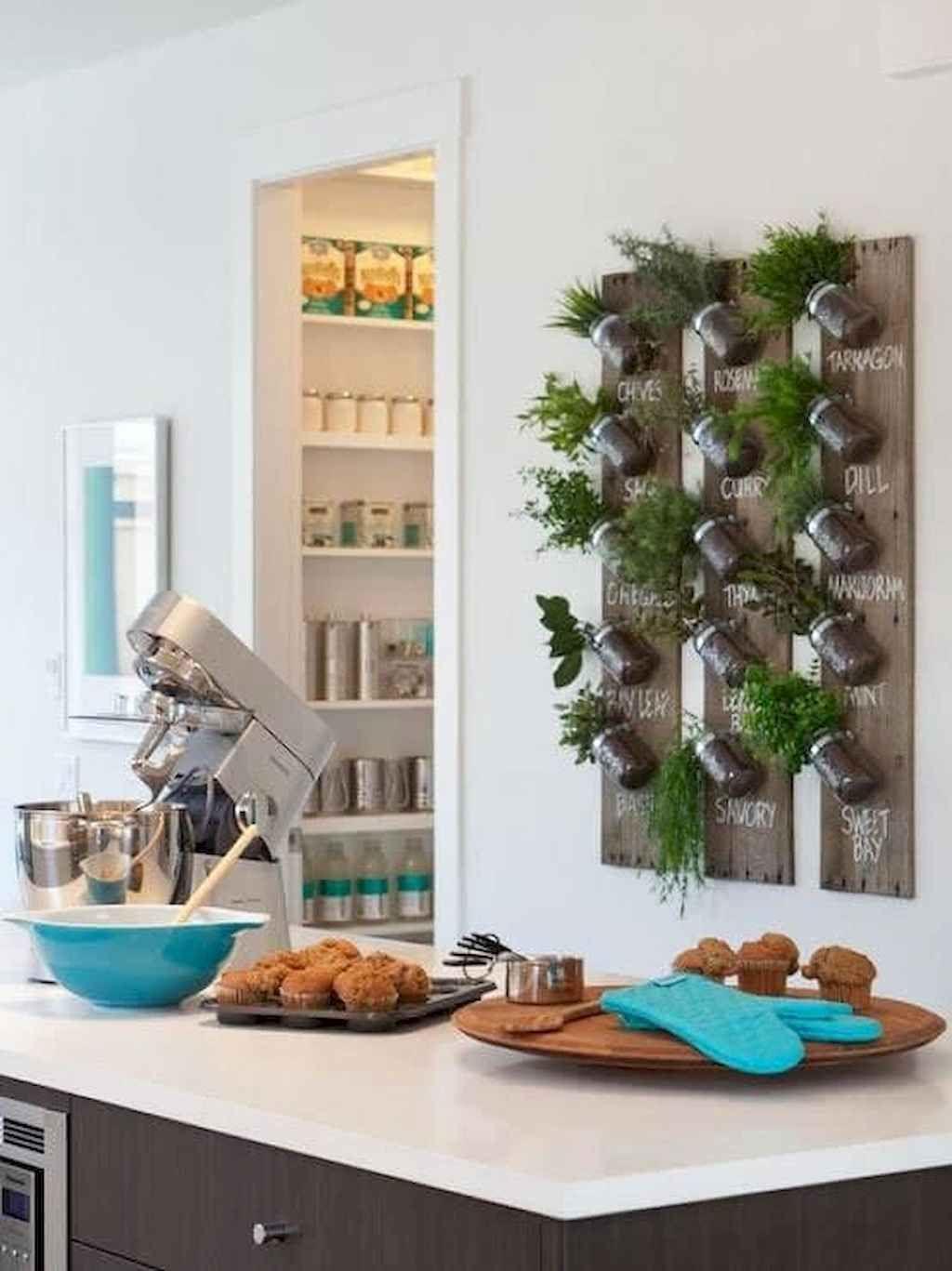 80 brilliant apartment garden indoor decor ideas 55 on indoor herb garden diy wall kitchens id=71658