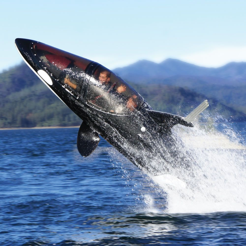 I need this!!          The Killer Whale Submarine - Hammacher Schlemmer