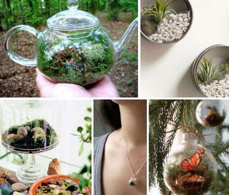 DIY-terrariums-main