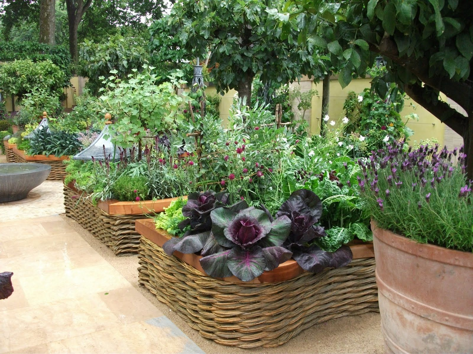 Modern Vegetable Garden Google Search Kitchen Gardens