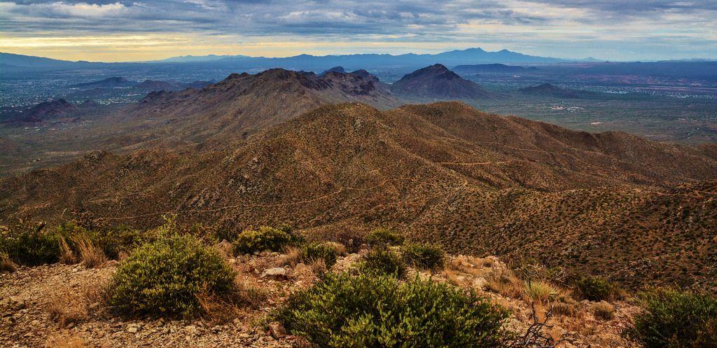 Wassen Peak Saguaro National Park Arizona USA [OC] [6000x2913]