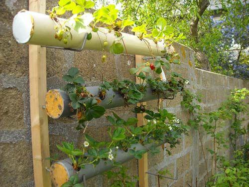 fraiseraie3 plantation hors terre jardins plantation. Black Bedroom Furniture Sets. Home Design Ideas