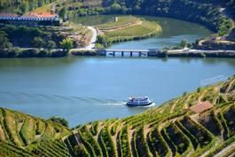 O melhor rio vinícola do mundo