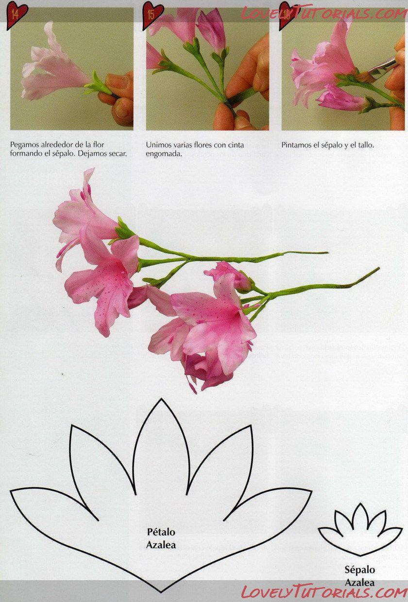 Gumpaste Fondant Polymer Clay Azalea Flower