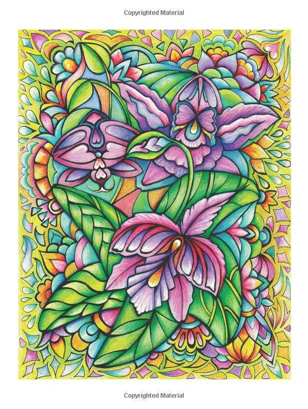 Creative Haven Floral Frenzy Coloring Book Adult Miryam Adatto 0800759793501