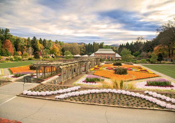 829287476cfdf8aba42b0bdea97baa94 - Best Time To Visit Biltmore Gardens