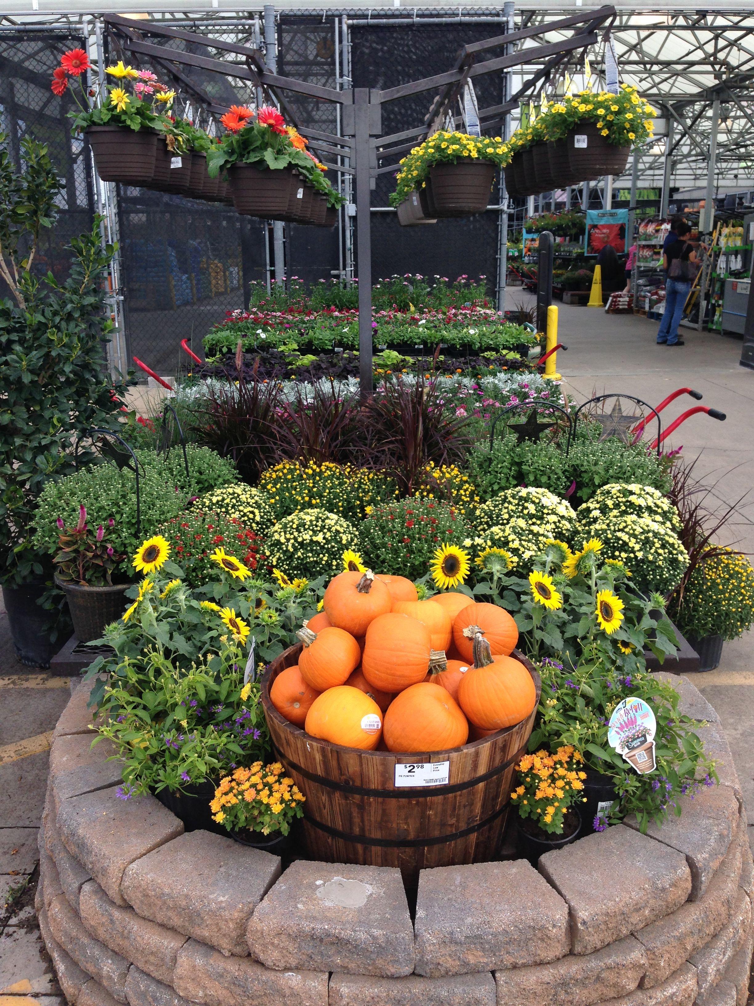 Lowe S Store 501 In Houston Tx Garden Projects Lowe S Garden