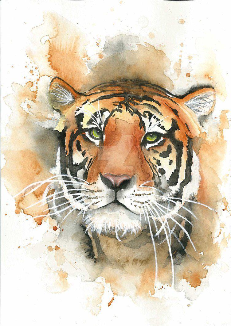 Watercolour Tiger By Madamekunterbunt Tigre De Acuarela