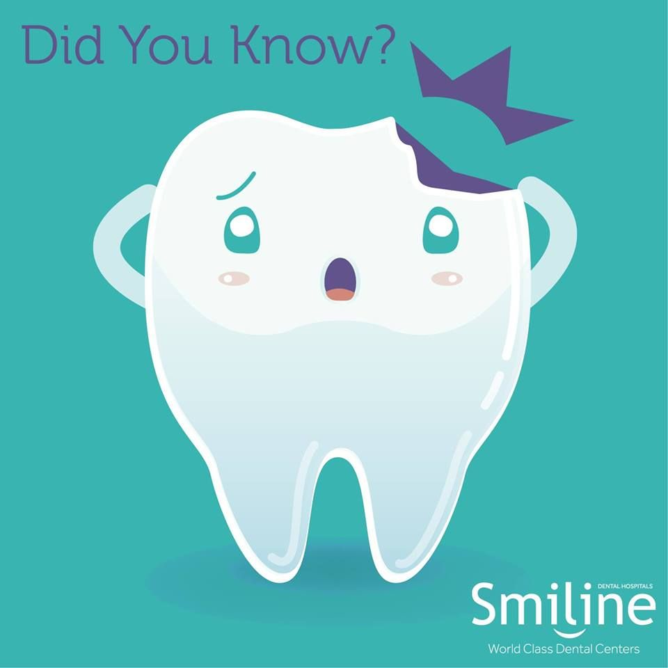 Tooth is the only part of the body that cant heal itself! #Tooth #Heal #Body #Smiline