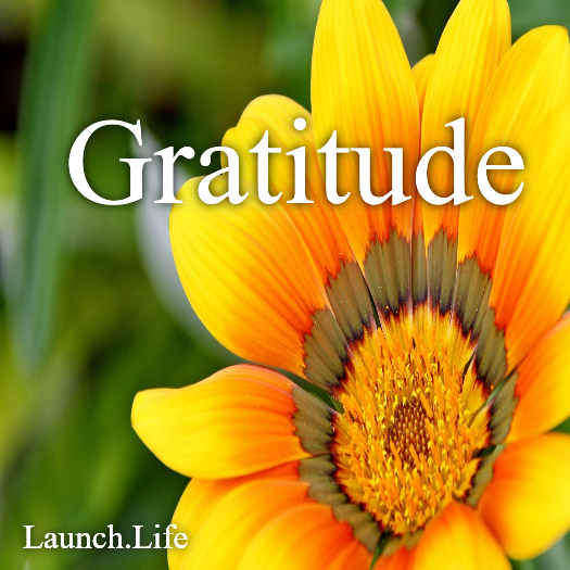 What are you grateful for? http://www.launch.life/
