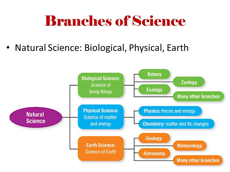 List The Branches Of Natural Science
