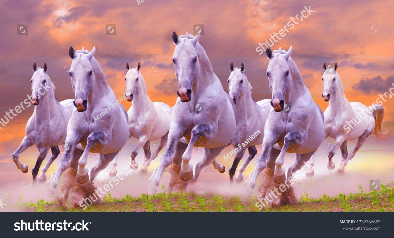 3d Wallpaper 7 Horses Ad Affiliate Wallpaper Horses Horse Illustration Horses 3d Wallpaper
