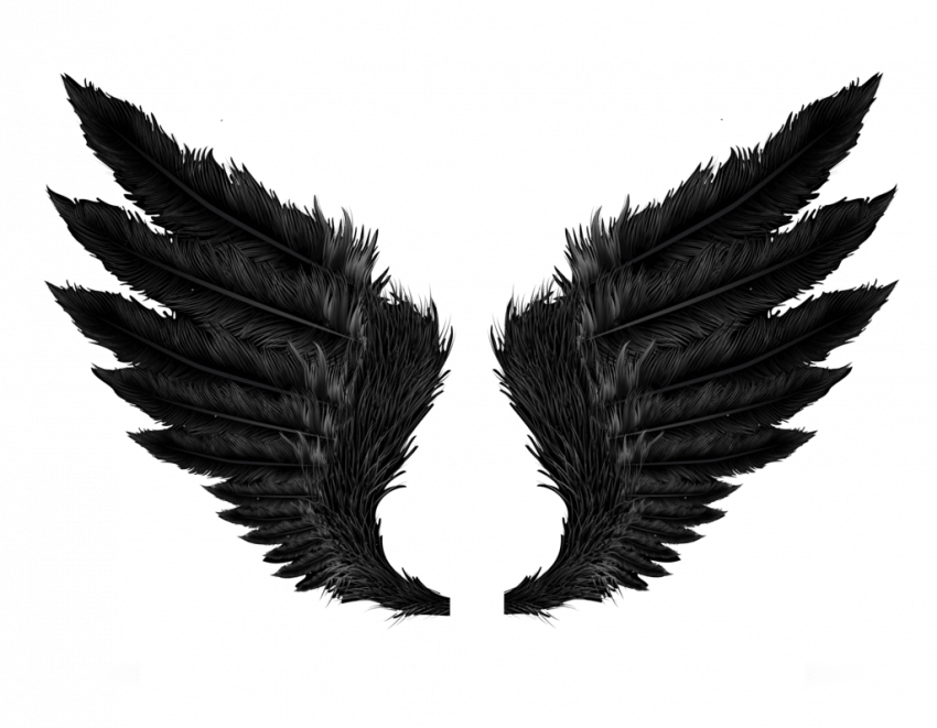 Wallpapers Photos Pictures Images Pngs Graphics Oye Be Smartest Wings Png Black Wings Swan Wings