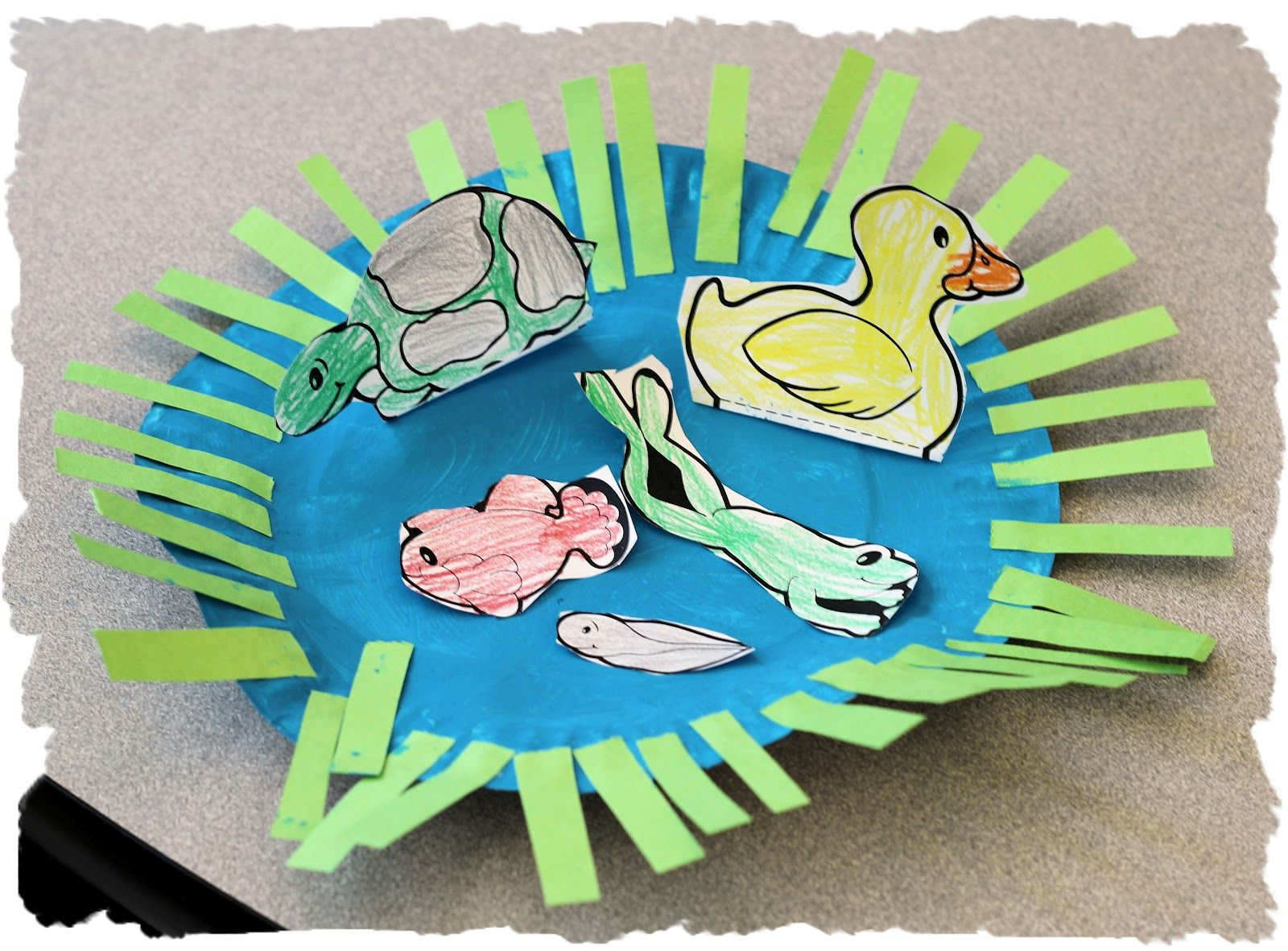 Pond animal kindergarten theme kelly and kim 39 s for Pond animals